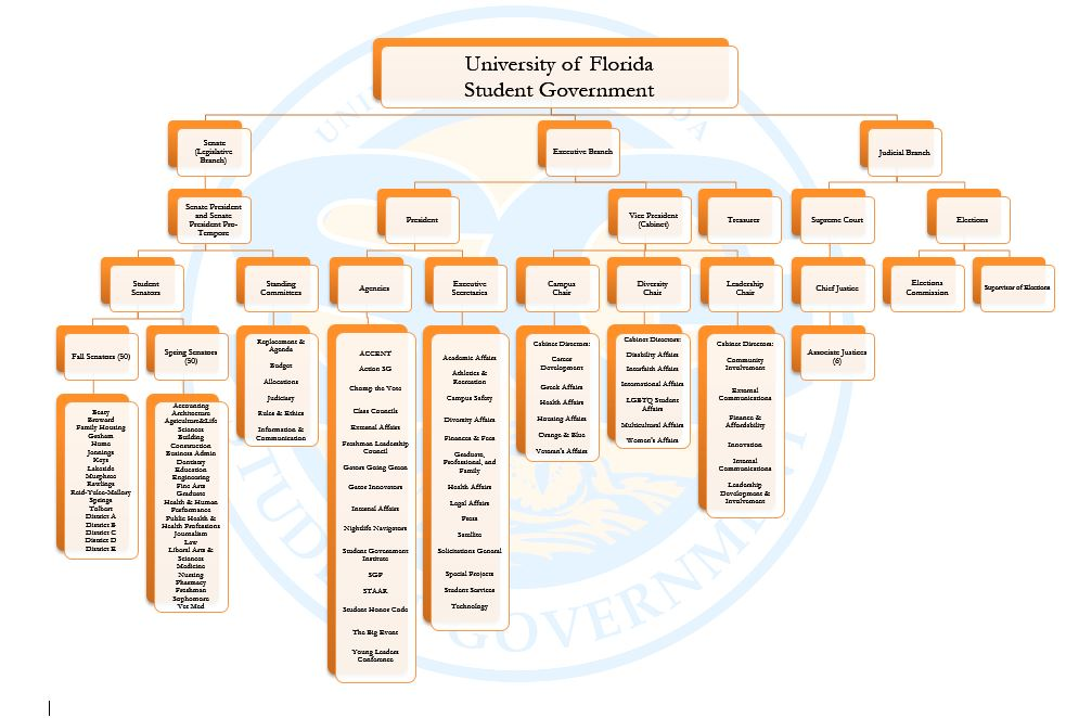 Structure of UF Student Government
